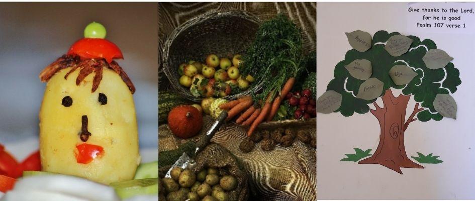 A harvest display of seasonal vegetables