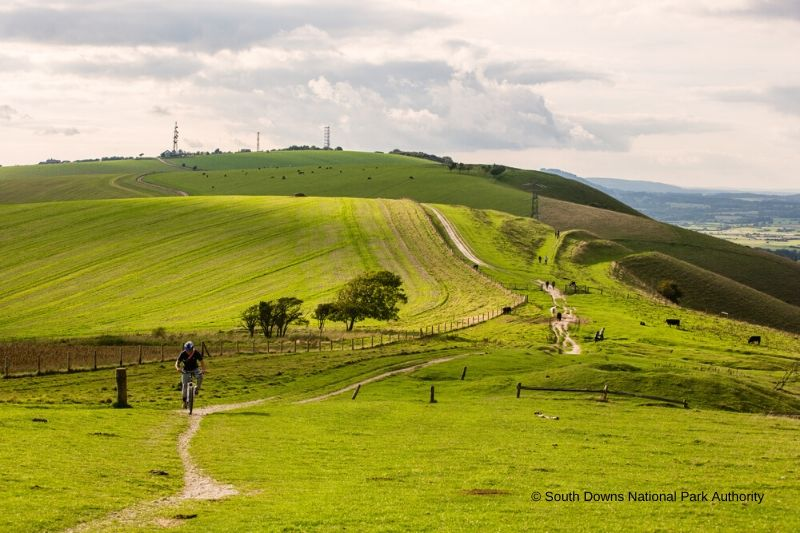 A view across the South Downs Way towards Devil's Dyke